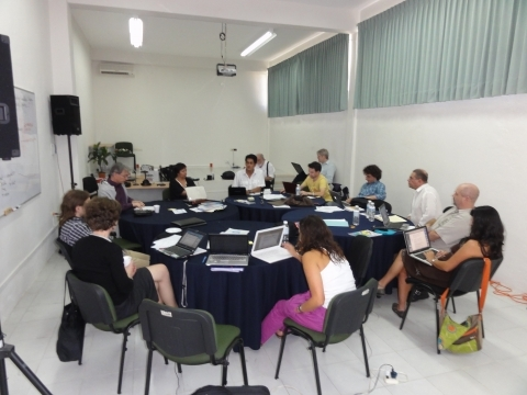 Working group on the Mexican based risk and vulnerability network