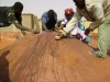 Women teaching Burkinabe masons about traditional renders
